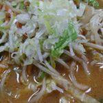 味噌ラーメン (3)