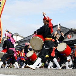 飫肥城下祭り エイサー