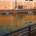 堀川運河1