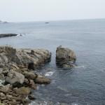 日南海岸観音岬 (2)