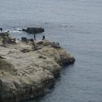 ビョウブ岩 (4)