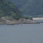 日南海岸観音岬 (4)