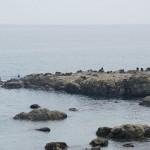 ビョウブ岩 (2)