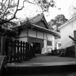 松尾の丸11