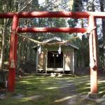 乙姫神社鳥居