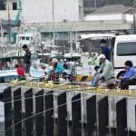 中央突堤釣り場 (3)