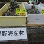 河野海産物