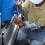 谷口養蜂場 (2)