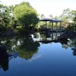 竹香園 (12)