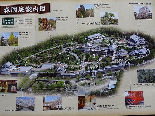 森岡城案内図