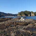 腕島のハナレ (4)