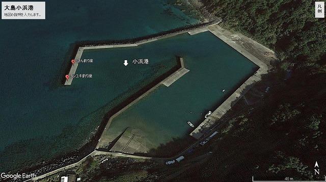 大島小浜港釣り場